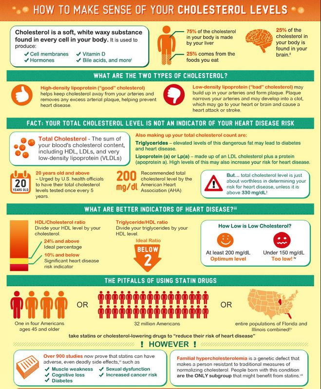 infographic for cholesterol